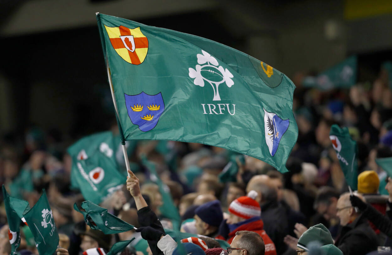Ireland fans wave their flags 26/11/2016